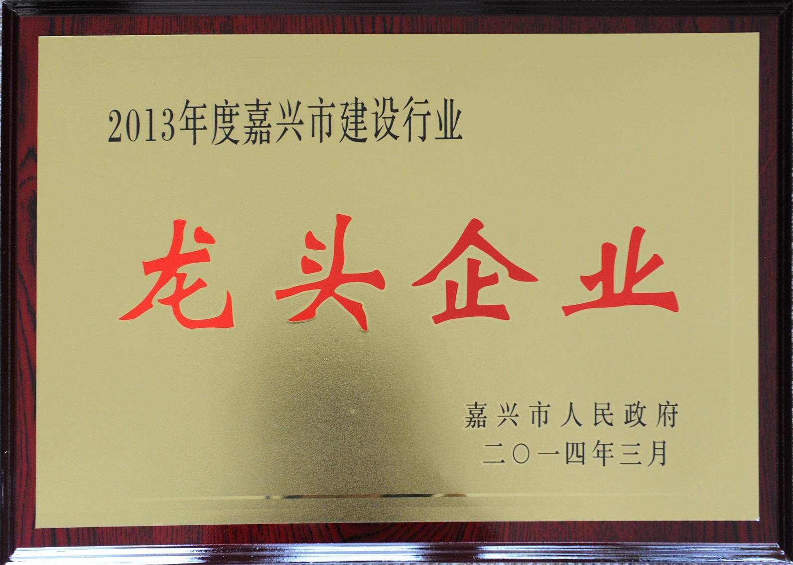 2013年度嘉兴建筑业龙头企业